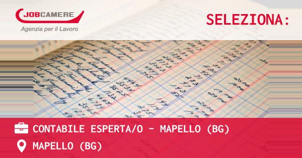 OFFERTA LAVORO - CONTABILE ESPERTA/O - MAPELLO (BG) - MAPELLO (BG)